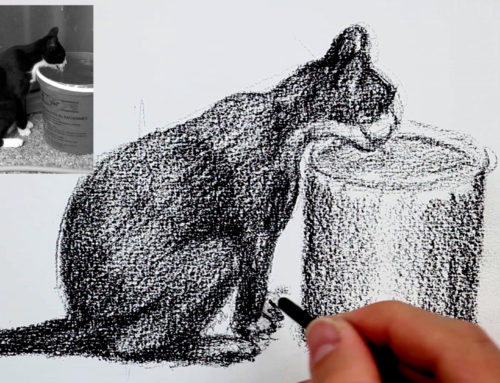 Comment dessiner un chat – tutoriel dessin